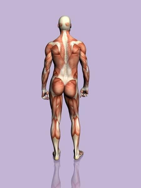 Wie als schejnyj die Osteochondrose zu behandeln