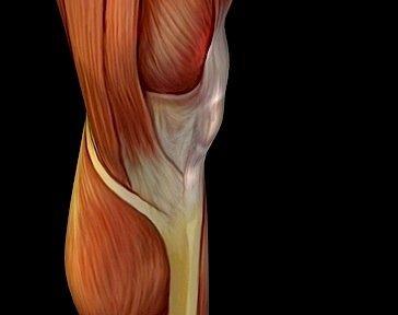 Schmerzen im Knie