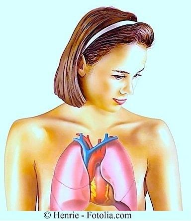 Lungen,junge Frau,Anatomie