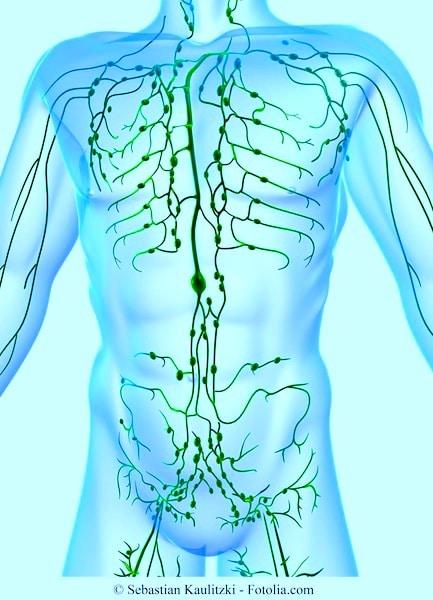 Lymphknoten,vergrößert,Karte,Lymphom