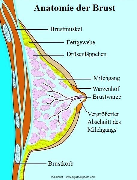 would like friends Schwiegermutter will meinen Schwanz have adventurous