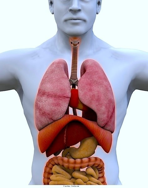 Lunge,Metastasen,Tumor