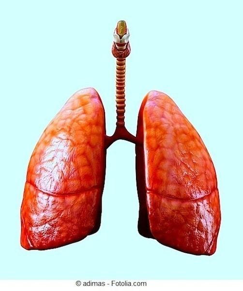 Lunge,Pleuraerguss