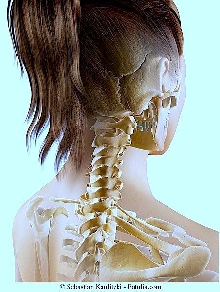 Temporomandibuläre Dysfunktion,Gelenk,Schläfenbein,Schädel