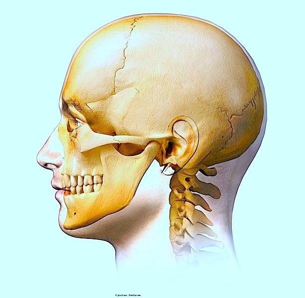 Unterkieferschmerzen,Schädel,seitlich