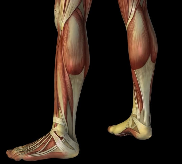 Wadenschmerzen links oder rechts