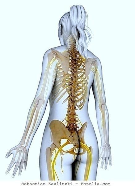 Multiple Sklerose,Untersuchungen,Nerven,Rückenmark