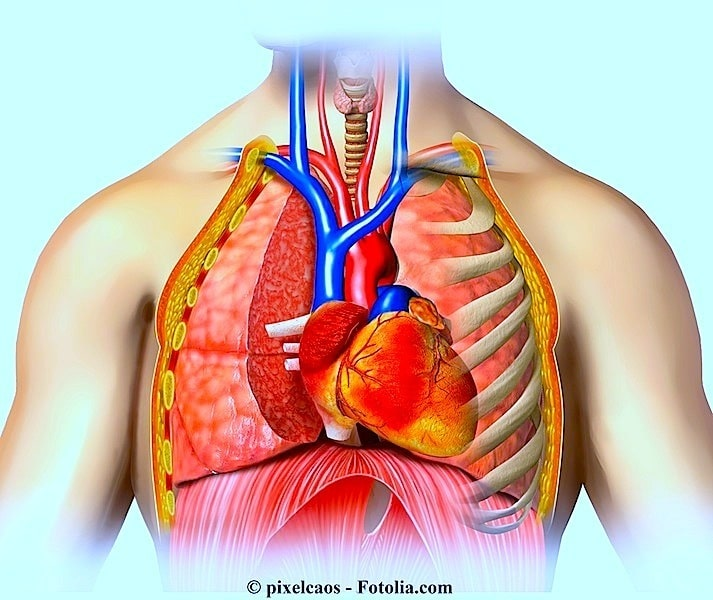 Symptome der Perikarditis
