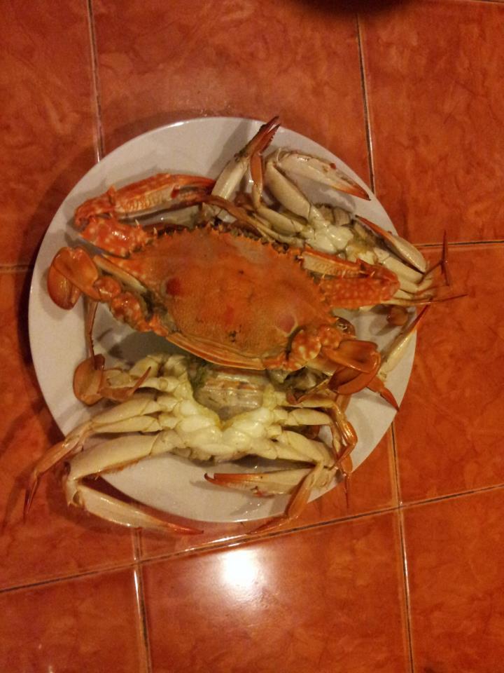 Krabbe,Zöliakie,zu vermeidende Speisen