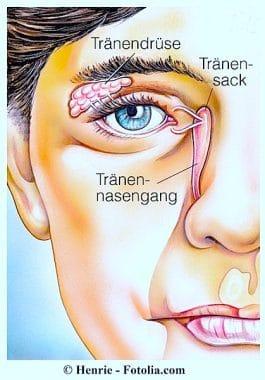 Übermäßiger-Tränenfluss