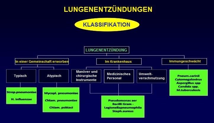 Klassifikation-Lungenentzündung-Gemeinschaft-Krankenhaus-immungeschwächt