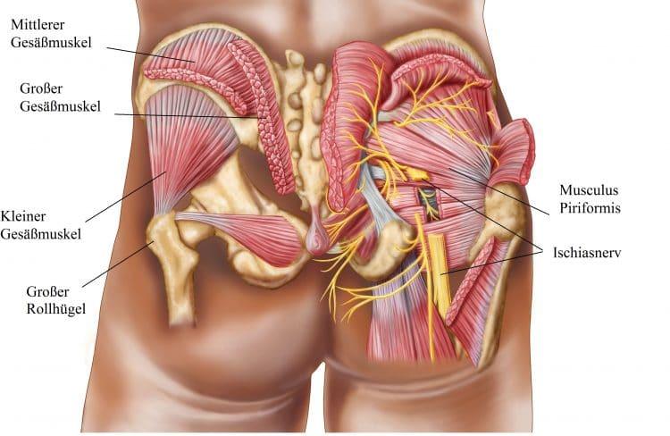 Die Hüftschmerzen-Symptome sind sehr unterschiedlich