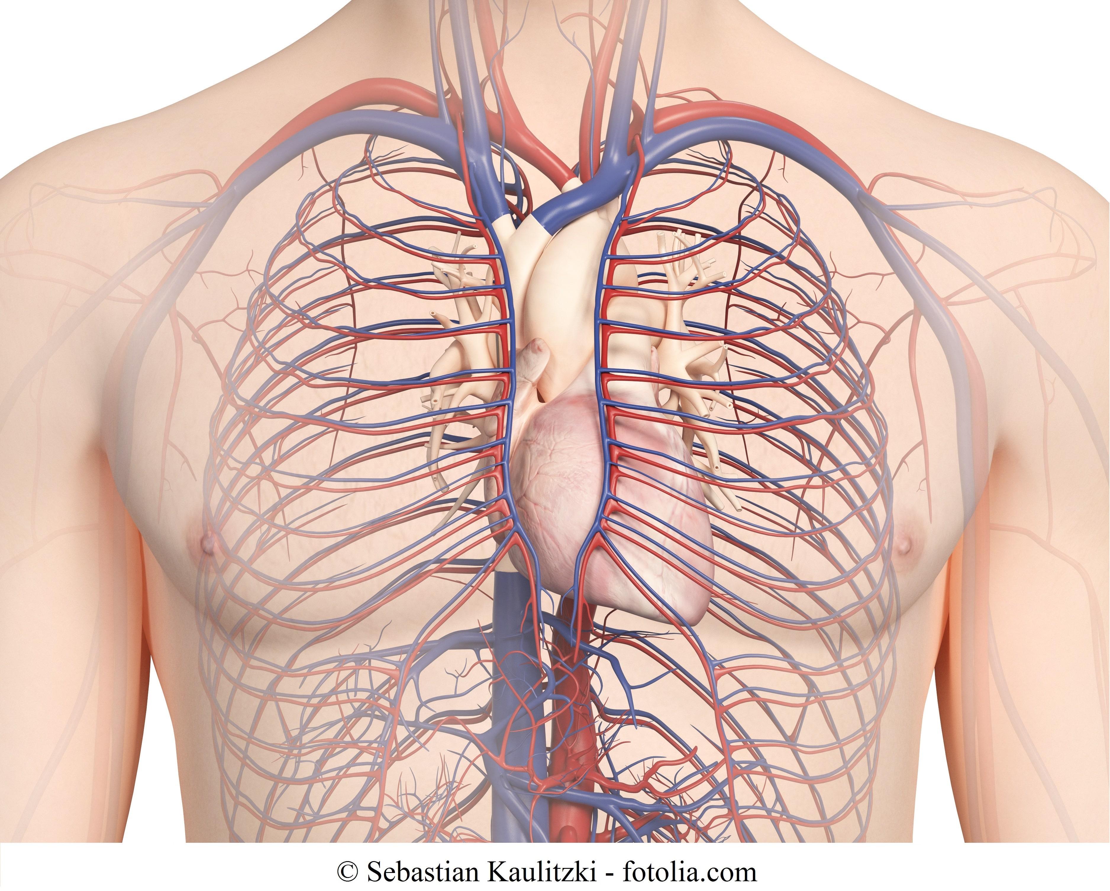 Aortenaneurysma – Aorta ascendens und descendens