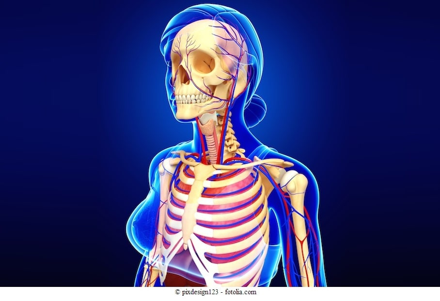 Knochenschmerz