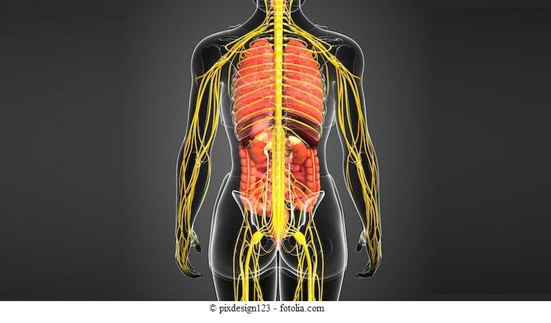 Multiple-Sklerose-Symptome-und-Ursachen