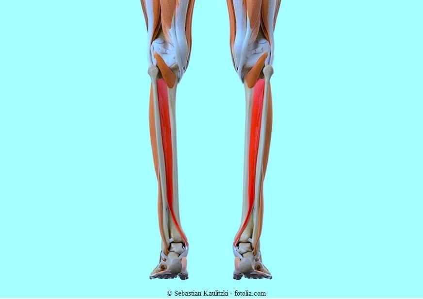 Gelenk- und Muskelschmerzen in den Wechseljahren