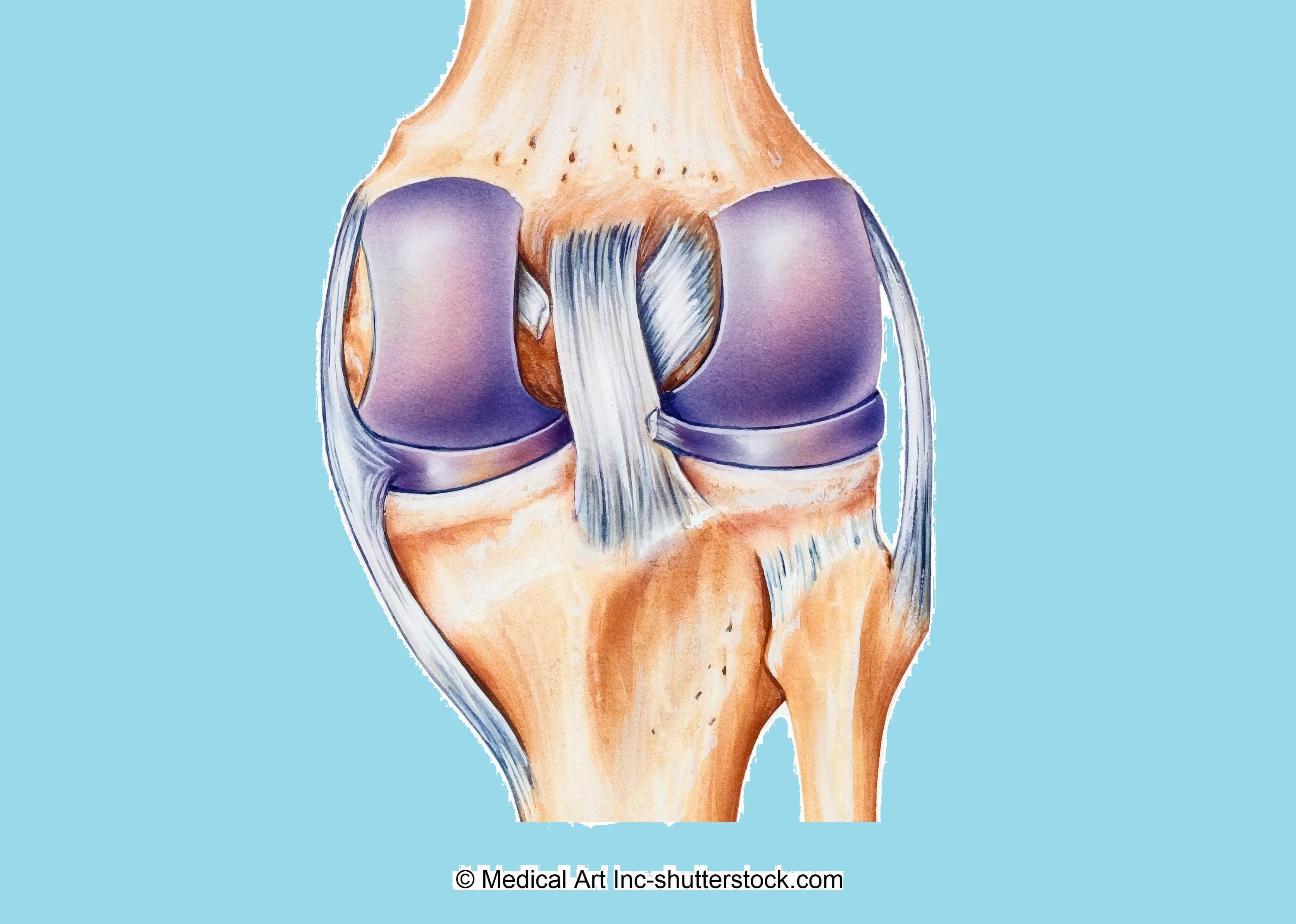 Schmerzen-im-Knie